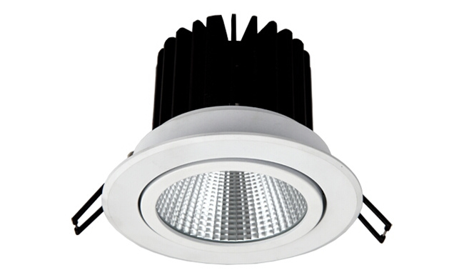 LED 12W COB嵌灯 可调角度 开孔100mm 黄光白光中性光