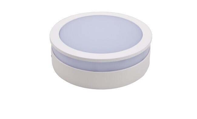 LED明装面板灯圆形18W  白光 020系列